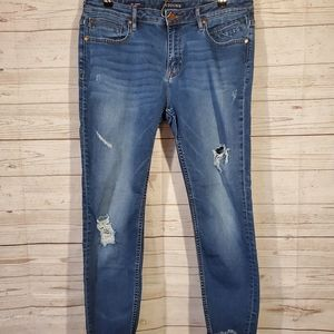Vigoss Jagger Skinny Distressed Jeans